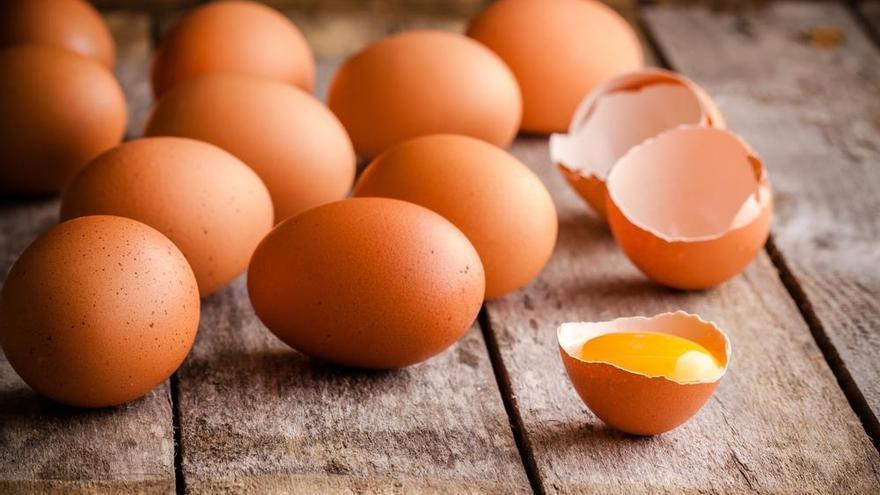 Baleares aprueba que los comedores públicos se provean solo de huevos criados en libertad