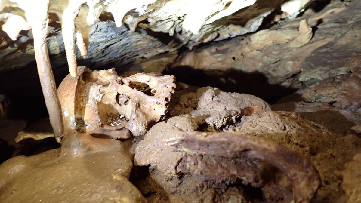 Imagen del cráneo humano que los espeleólogos hallaron en una cueva de Tales.