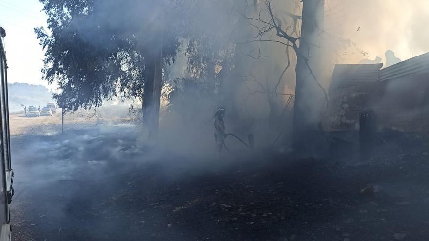 Los bomberos y el Infoex intervienen en un incendio en Las Crispitas
