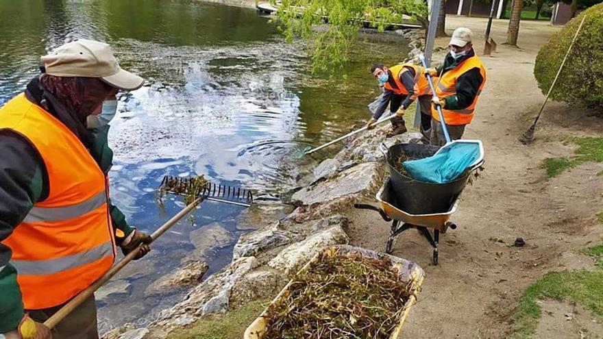 L'última neteja de l'estany hi genera algues bones per al seu ecosistema