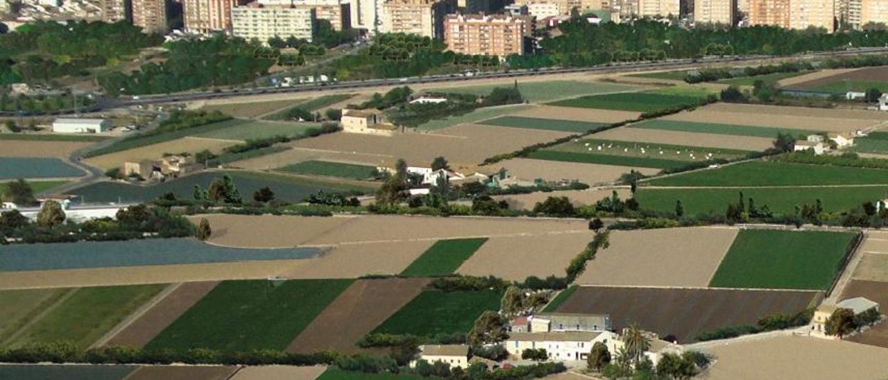 El CES rechaza que el Plan del Consell para la Huerta permita expropiar tierra abandonada