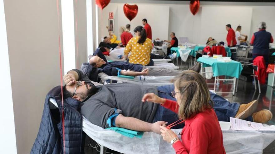 Llamamiento a la donación de sangre en Elche tras el descenso del verano