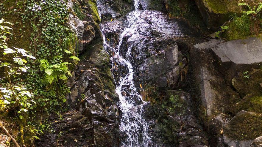 Com beure aigua mineral natural de manera més sostenible?