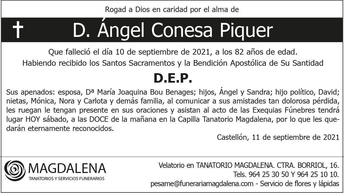 D. Ángel Conesa Piquer