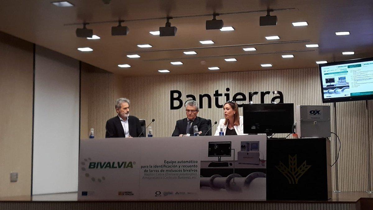 Tecnología Inteligente y Big Data para evitar la expansión del mejillón cebra