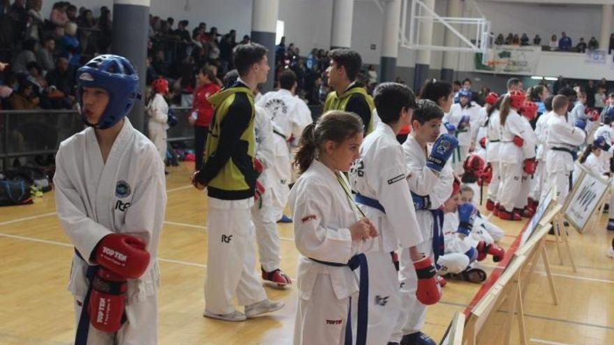 Éxito de la I Copa Malagueña de Taekwondo