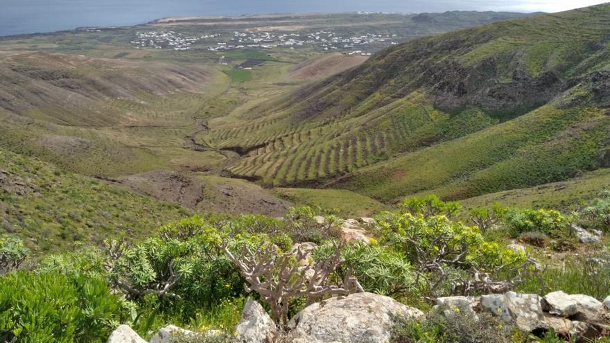 Pocas nubes, más calor y viento más bien flojo este lunes en Canarias