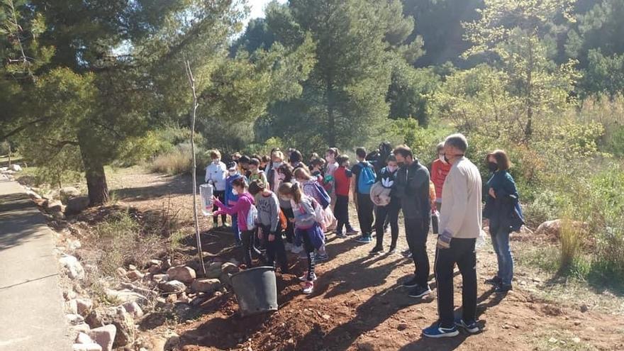 Els escolars reforesten de la mà de la Vall Verda