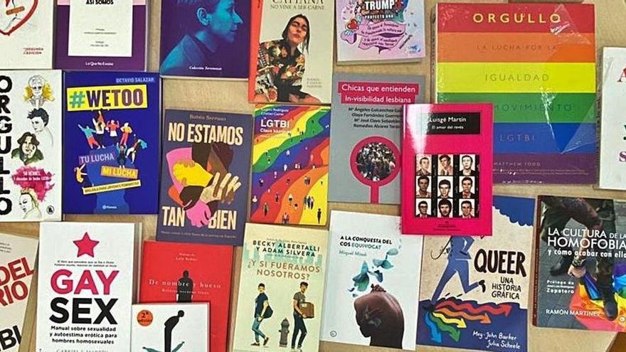 La alcaldesa de Castelló pedirá explicaciones por los libros LGTBI retirados
