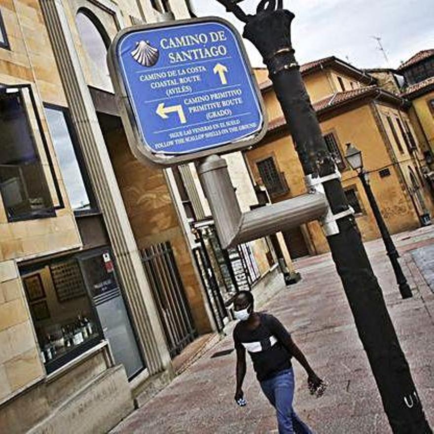 Practicantes de marcha nórdica y caminantes en una senda verde en Oviedo. | Irma Collín / foto cedida a LNE