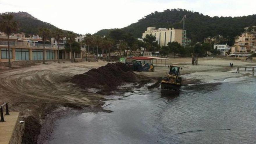 Limpieza de la playa de Camp de Mar