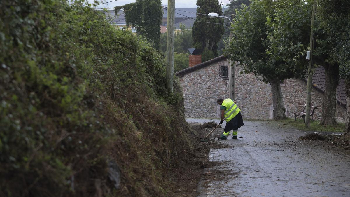Un trabajador, en pleno desbroce en un camino de La Luz, en la campaña del año pasado.