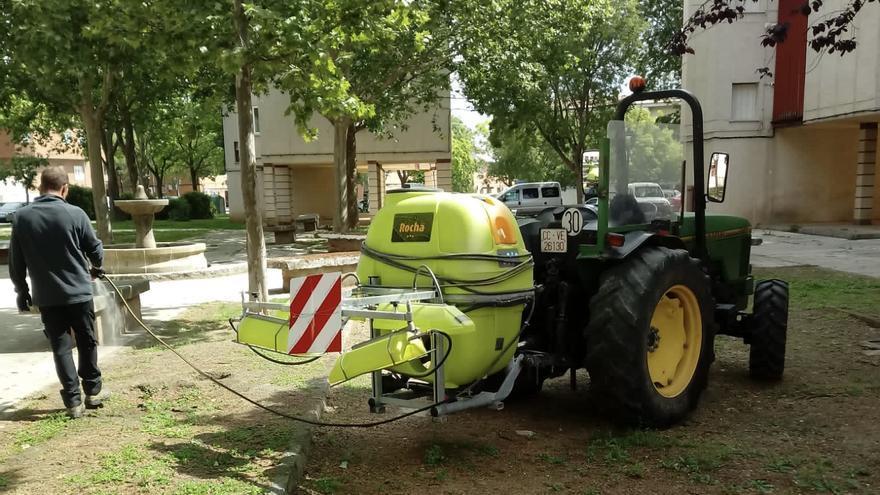 El Ayuntamiento de Coria inicia labores de prevención de plagas e incendios