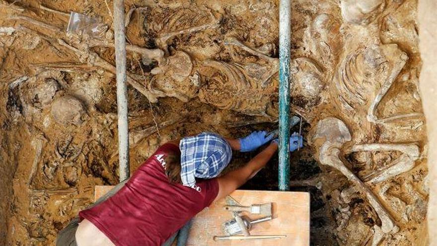 Hallan restos humanos en una posible fosa de la Guerra Civil en El Toro