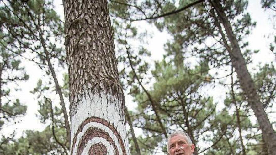 A Guarda tiene su propio bosque pintado