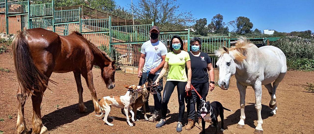 José María Darias, Pilar Fernández y Mónica Maroño, creadores de SOS Vida Animal GC, en la finca de Teror . | | LP/DLP