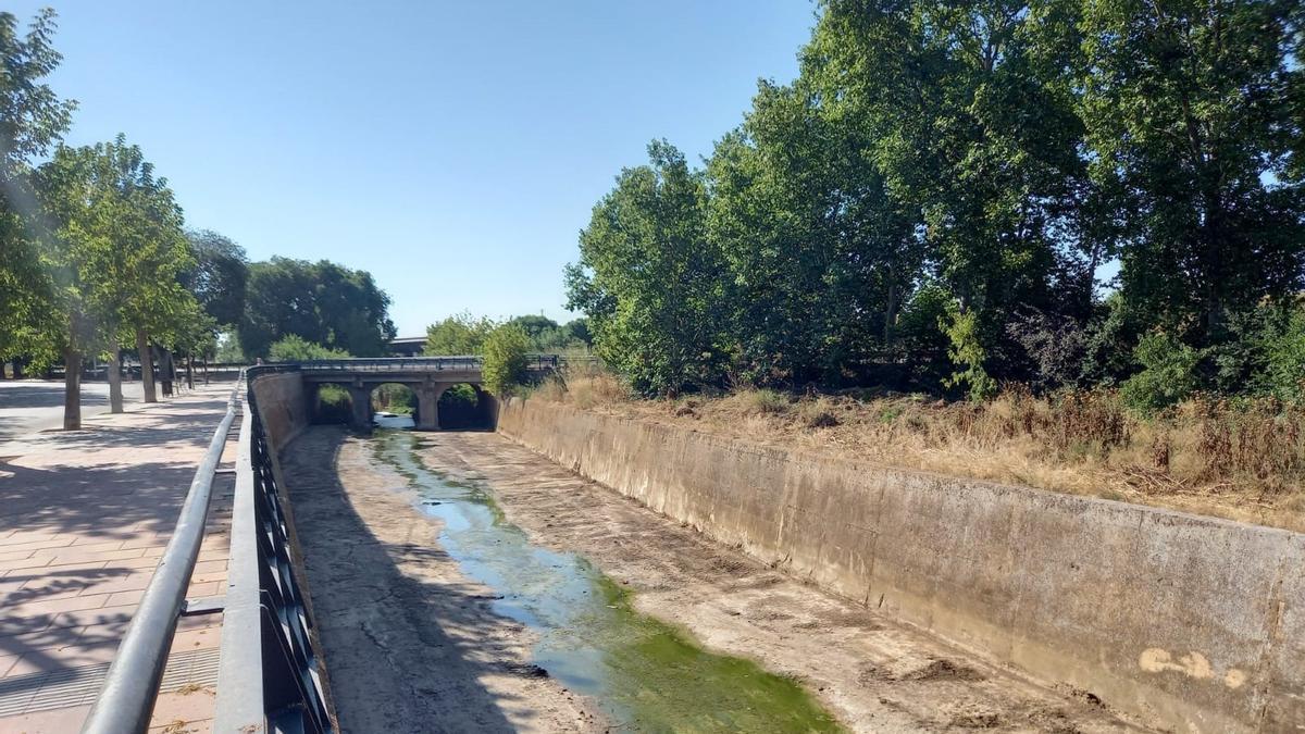 Limpieza del río Magro