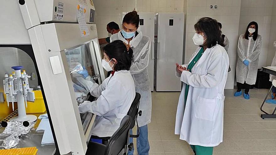 El Laboratorio de Sanidad Animal se consolida como un referente regional en ovino y caprino