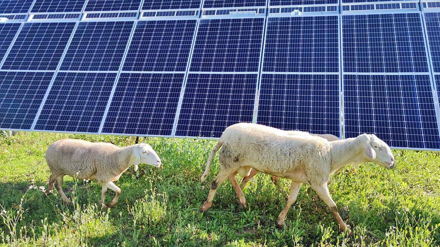 Málaga lidera la energía renovable de Endesa en Andalucía