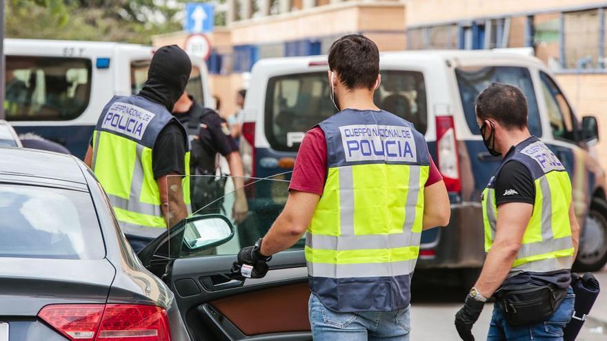 Todos los detenidos en la redada de drogas, gallos y tortugas de Lorca ya están en libertad