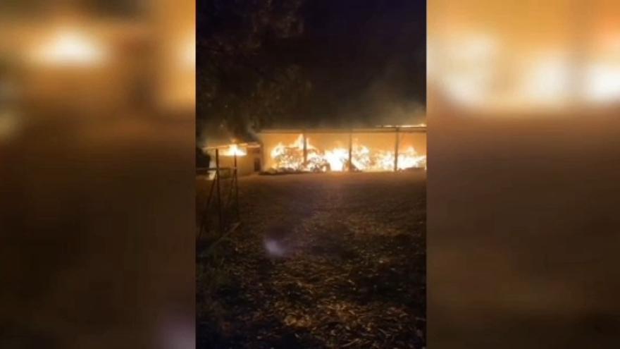 Un incendio nocturno arrasa parte del aserradero estradense de Berres