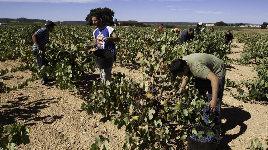 Bruselas quiere excluir de las ayudas agrícolas a quienes exploten a temporeros