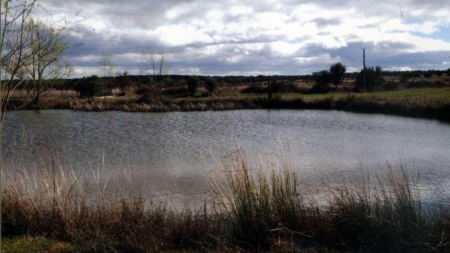 Rutas a pie por tierras de Zamora:  Por el Valle Grande de Calzadilla de Tera