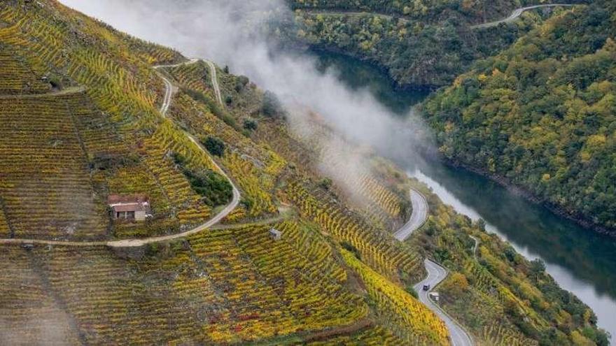 Ribeira Sacra, epicentro del vino español