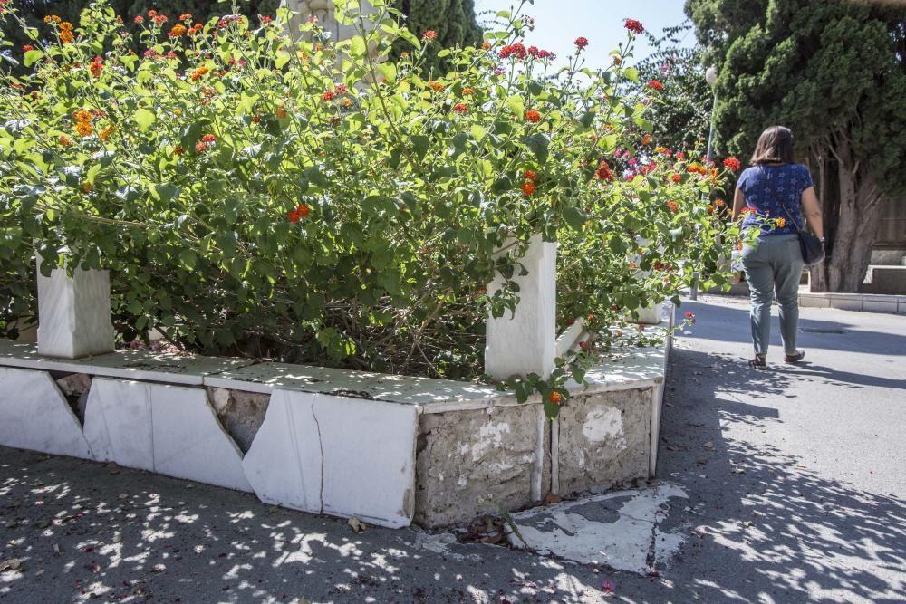 Visitantes critican la imagen actual del camposanto de la capital, que acumula falta de mantenimiento y de limpieza.