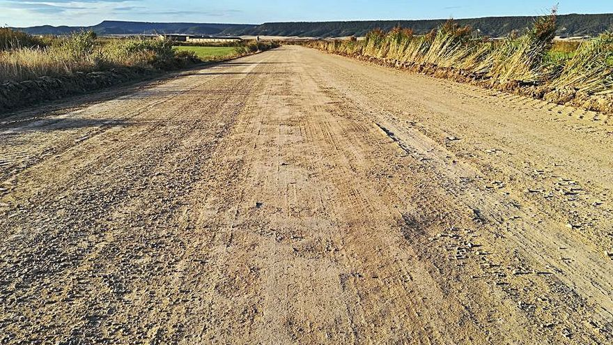 Acondicionados más de 4.600 metros lineales  de caminos