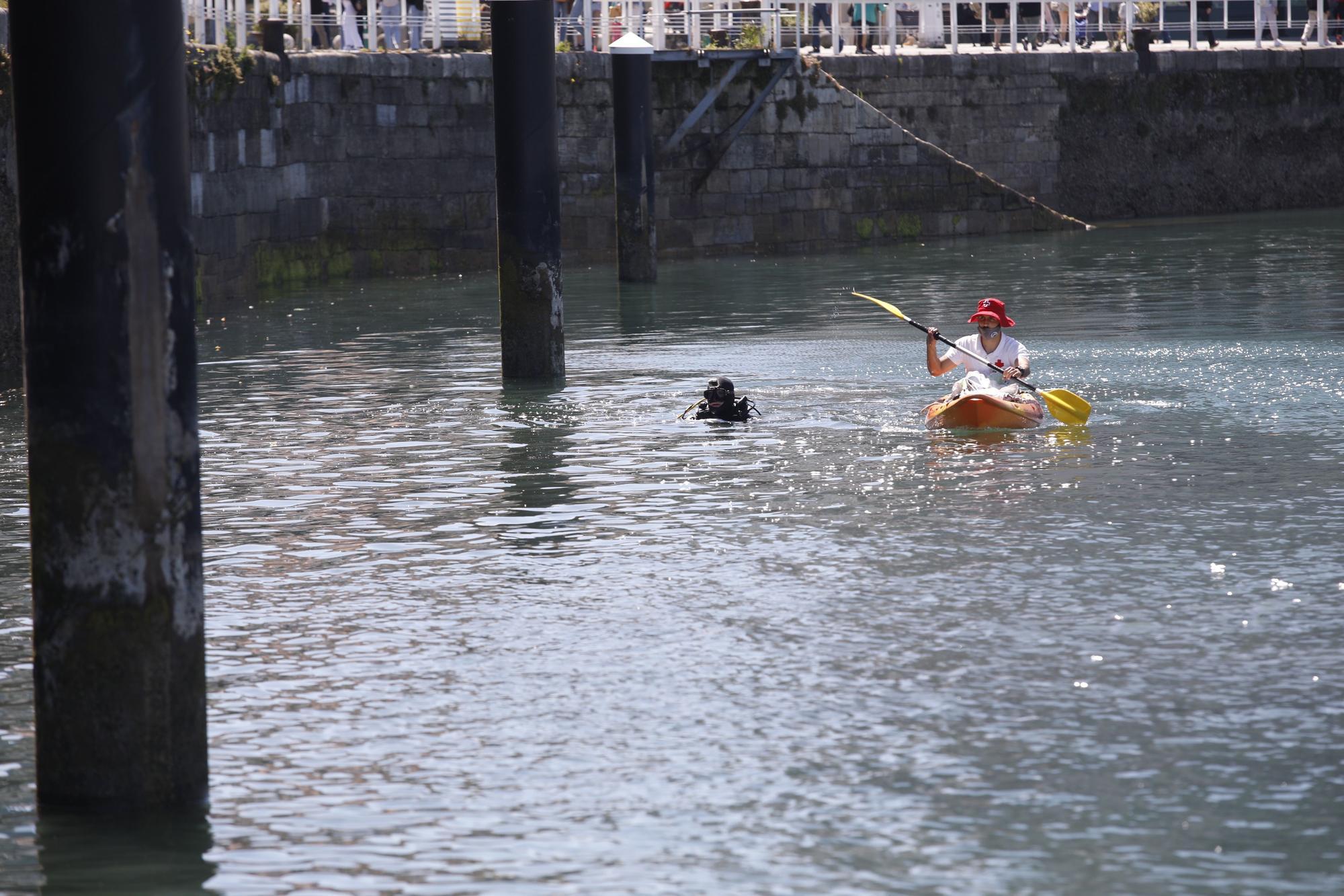 Limpieza del fondo del puerto deportivo