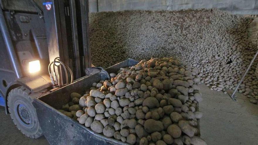 Los agentes vigilarán el transporte de patata