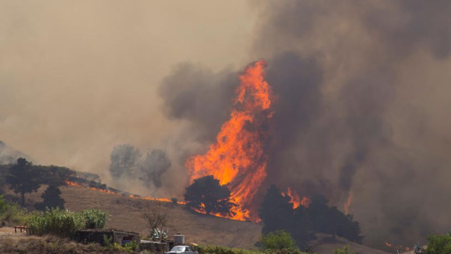 Més de 6.000 hectàrees cremades i 9.000 evacuats en l'incendi de Gran Canària