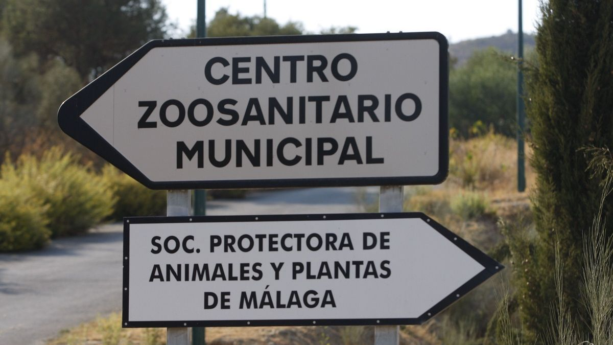 Carteles que indican el camino para llegar al Zoosanitario y a la Protectora.