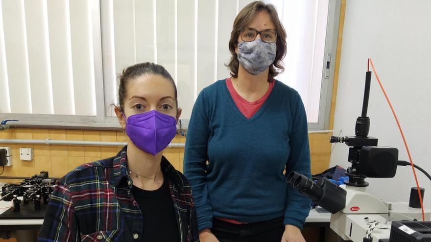 Investigadoras de la UA publican un artículo sobre un nuevo material 2D con una amplia respuesta fotoeléctrica