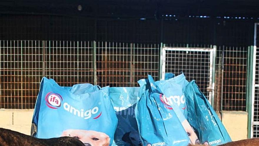 Gadis entrega 35.000 kilos de alimentos a cincuenta protectoras de animales