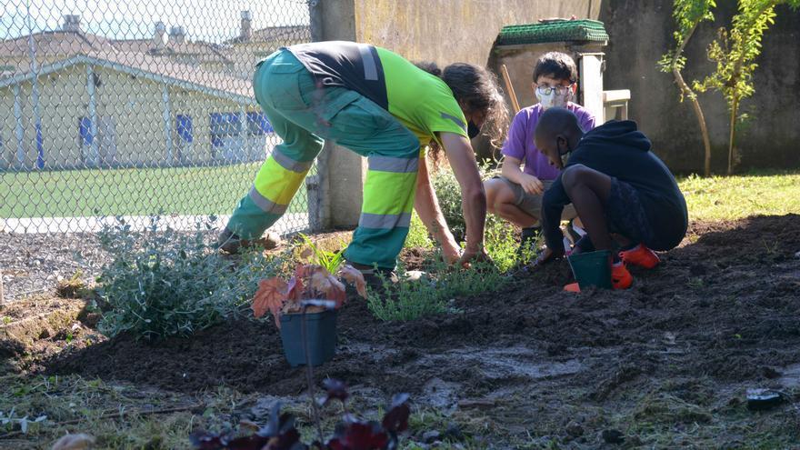 Alumnes dels centres educatius d'Olot participen en el projecte educatiu de Viles Florides