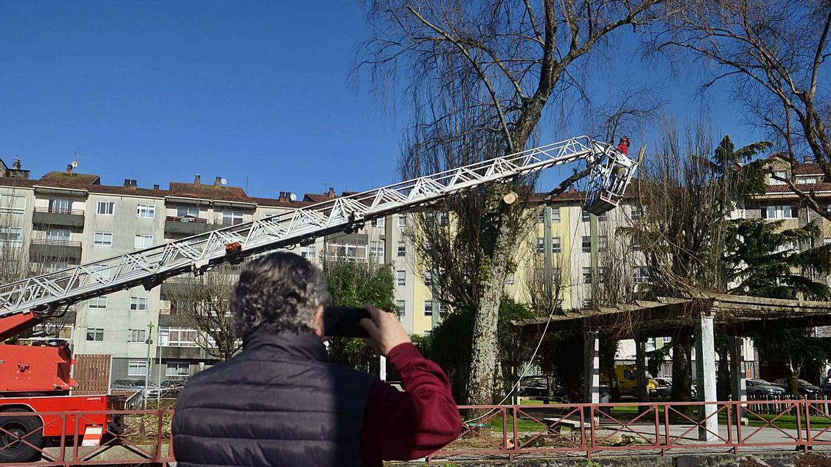 Los operarios utilizaron el camión escalera de Emerxencias para cortar las ramas en altura. |  // NOÉ PARGA