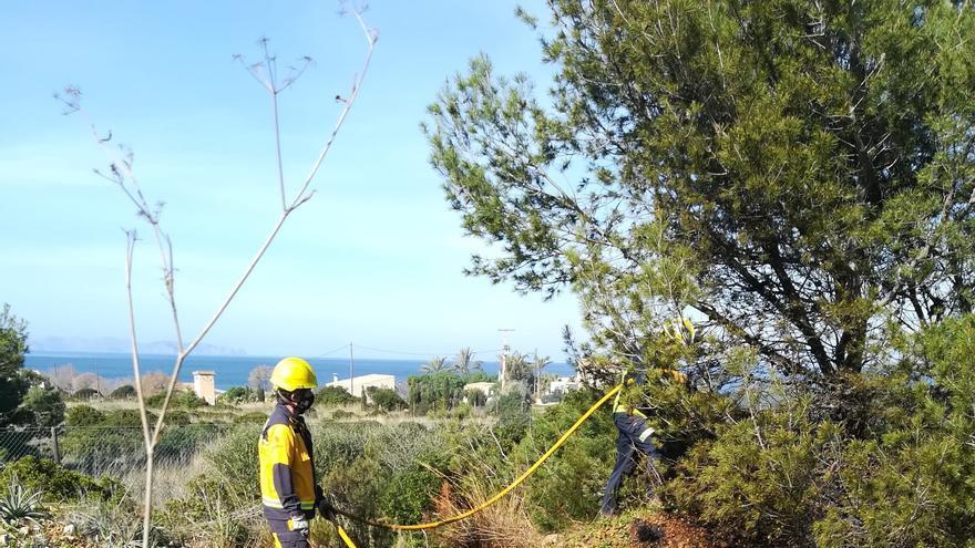 Extinguido un fuego forestal junto a la Colònia de Sant Pere