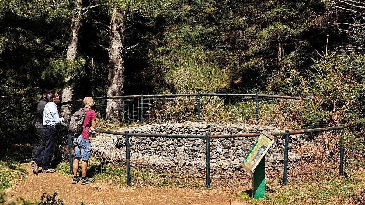 Excursionistas en la Sierra de las Nieves.