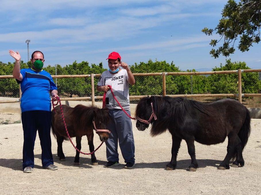 45 usuarios del Collet de Benicarló participan en un proyecto terapéutico con caballos.