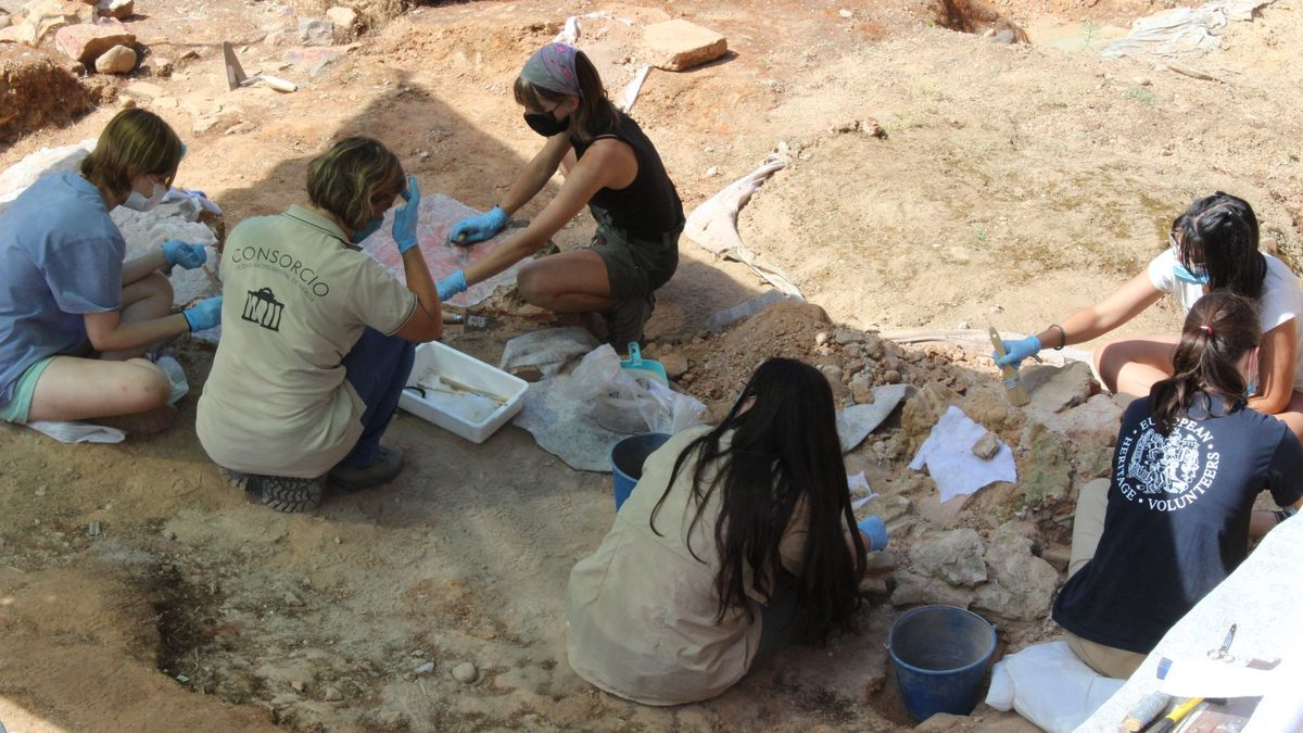 Un grupo de jóvenes trabajando en el yacimiento de la Casa del Mitreo.
