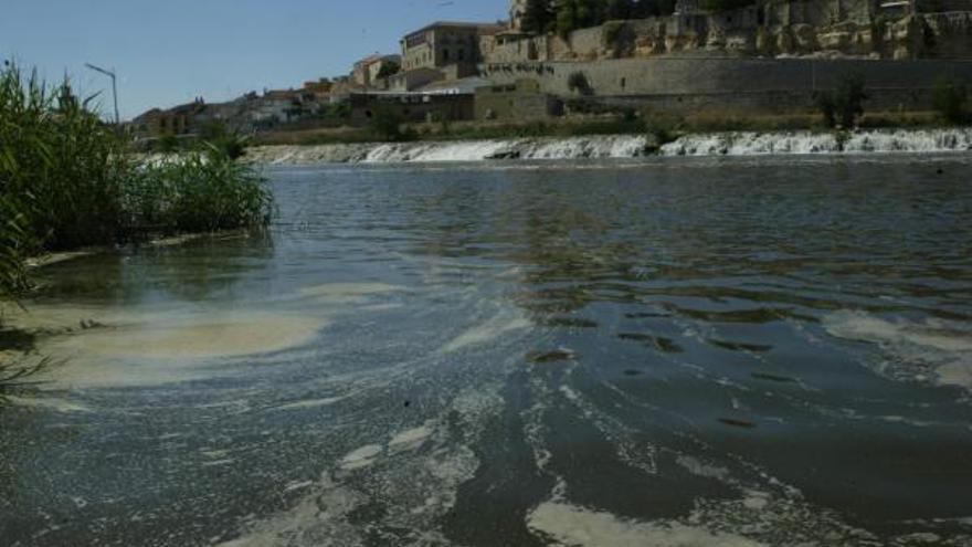 Ecologistas denuncian la polución por lindano en el suelo y las aguas de Castilla y León