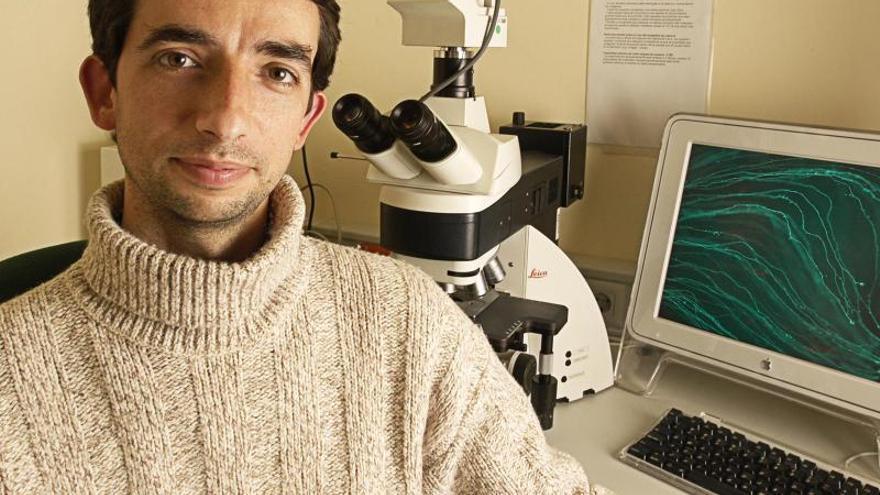 Los avances sobre el cerebro y el origen del tacto, premios Alberto Sols de Sax