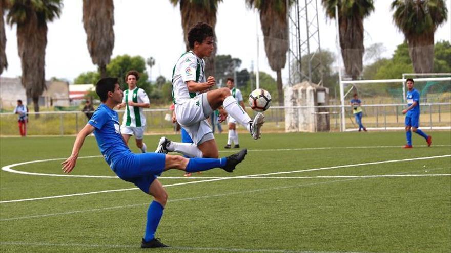 El Séneca se proclama subcampeón de liga