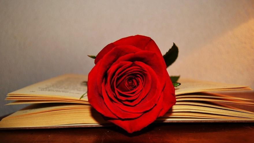 Los mejores libros y rosas para regalar en Sant Jordi (Día Internacional del Libro) a tu pareja