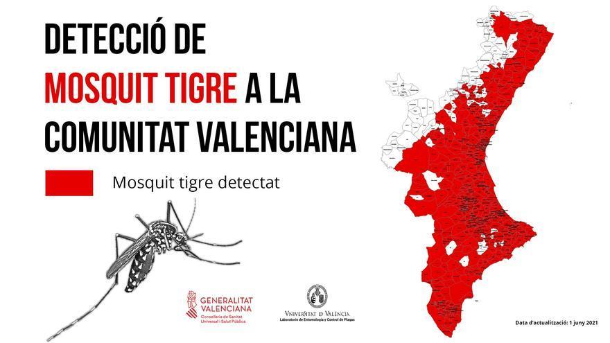 Sanitat destina 350.000 euros a la lucha contra el mosquito tigre en la Comunitat