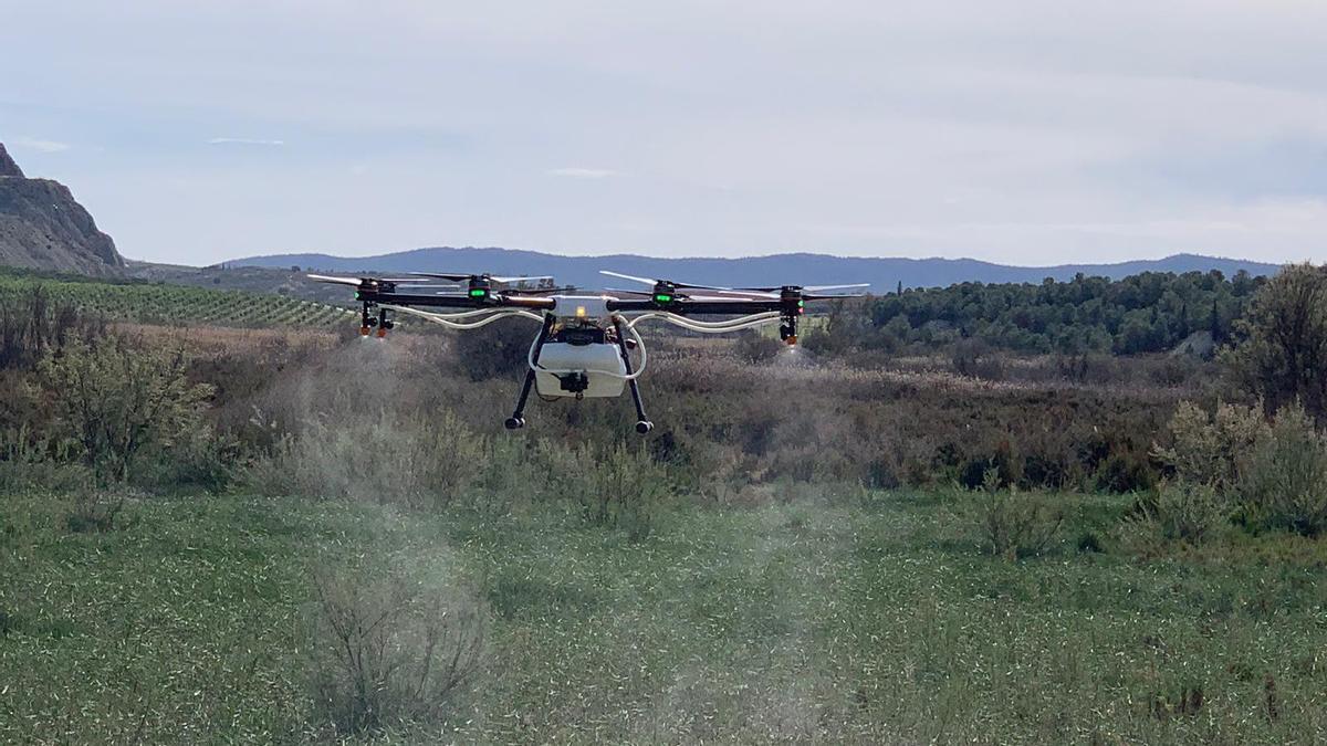 Lokímica realiza desinsectaciones con drones para ser más eficaces.