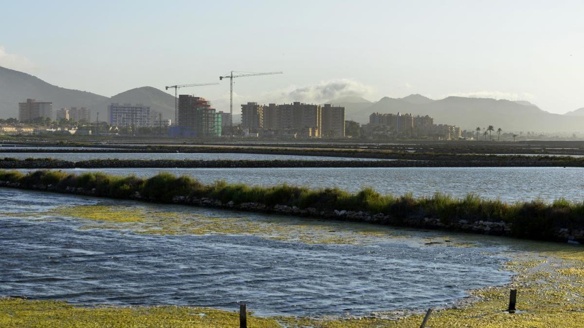 El Ministerio no descontaminará el Mar Menor hasta que cesen todos los vertidos