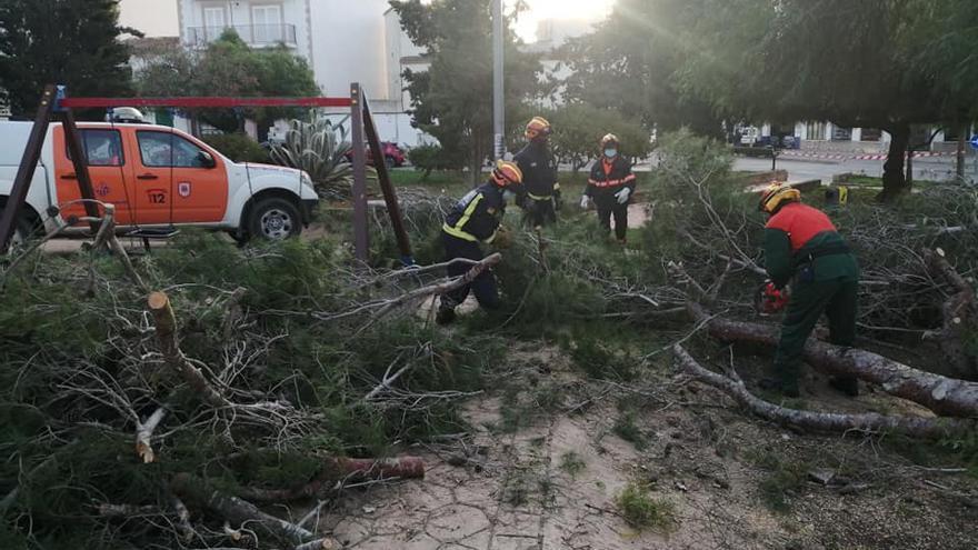 Los bomberos siguen trabajando en Palma y Llucmajor por los efectos del vendaval